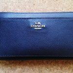 女性ミニマリストのお財布の中身公開。カードの枚数は多い方かも?