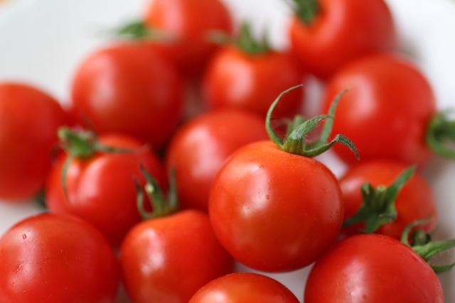 お弁当のおすすめ副菜 ミニトマト