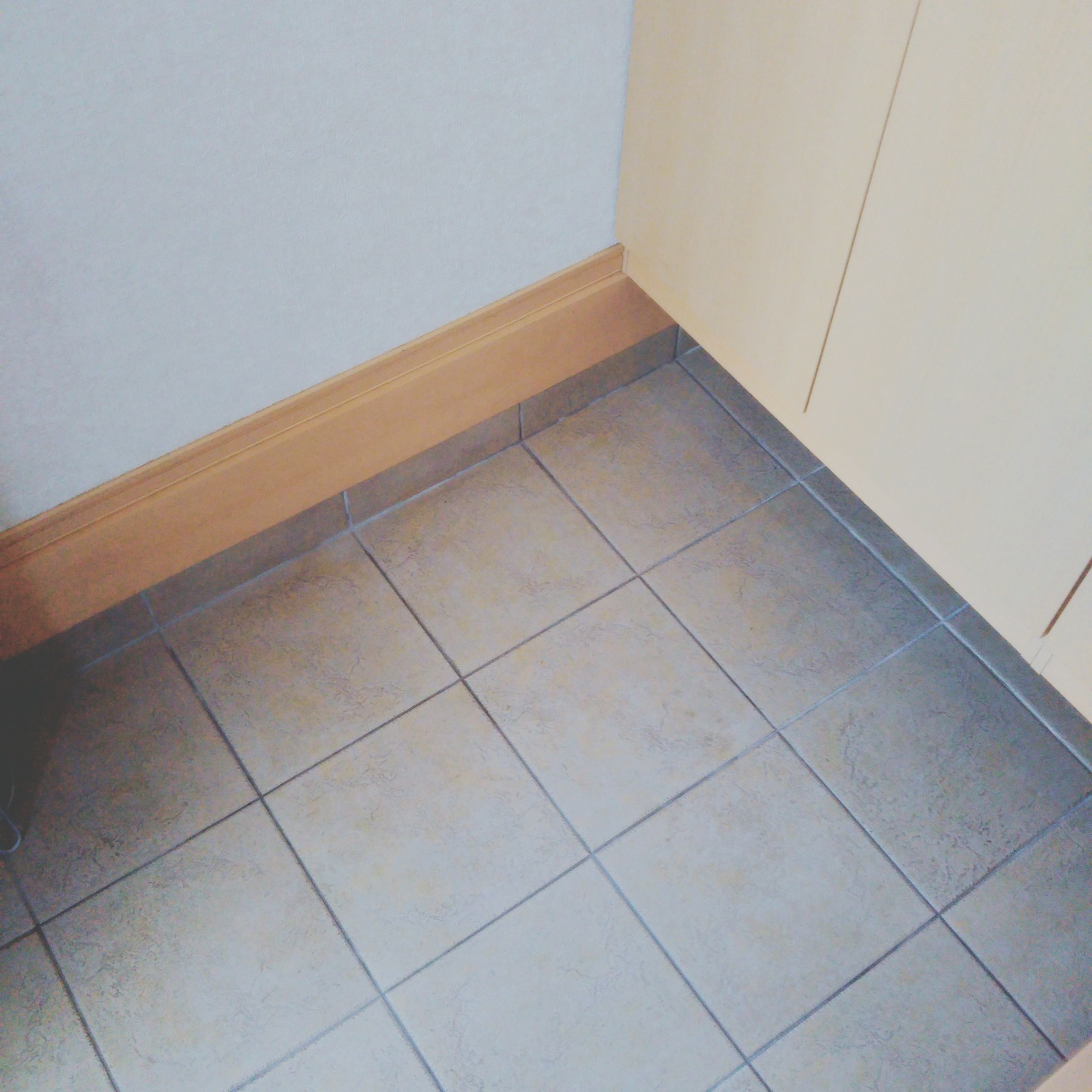 玄関掃除の頻度とハッカ油